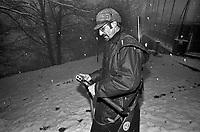 caccia al cinghiale in provincia di Como