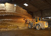 The clamp has a wedge layer of grass silage, then maize, and a covering of straw.