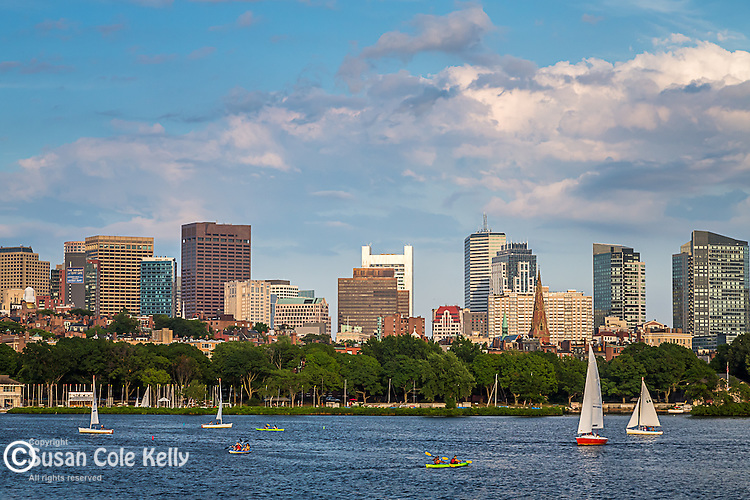 A summer afternoon on the Charles River, Boston, Massachusetts, USA