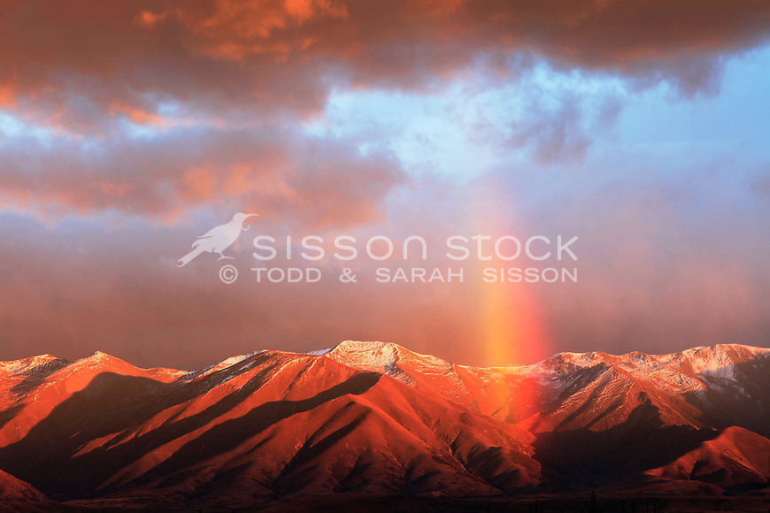 Spectacular and beautiful dawn rainbow over the folded ridgelines of the Ben Ohau range..