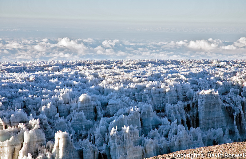 Melting glaciers on the summit of Kilimanjaro stand testament to the effects of global warming and deforestation.