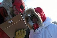 Paul Gebhardt is checked into Nikolai. Photo by Jon Little.