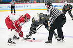 ADRIAN, MI - MARCH 18: Katelyn Turk (8) of Plattsburgh State University and Brooke Lupi (17) of Adrian College face off during the Division III Women's Ice Hockey Championship held at Arrington Ice Arena on March 19, 2017 in Adrian, Michigan. Plattsburgh State defeated Adrian 4-3 in overtime to repeat as national champions for the fourth consecutive year. by Tony Ding/NCAA Photos via Getty Images)