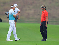 Ian Poulter (ENG) and Victor Dubuisson (FRA) on the 11th hole during Friday's Round 2 of the 2014 BMW Masters held at Lake Malaren, Shanghai, China 31st October 2014.<br /> Picture: Eoin Clarke www.golffile.ie