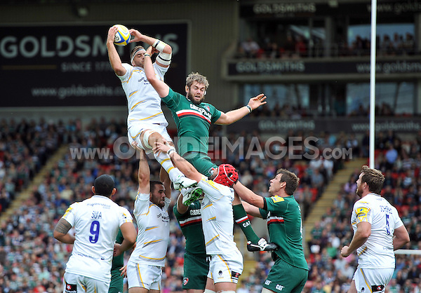 Sam Betty rises high to win lineout ball. Aviva Premiership match, between Leicester Tigers and Worcester Warriors on September 8, 2013 at Welford Road in Leicester, England. Photo by: Patrick Khachfe / JMP