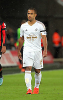 Wayne Routledge of Swansea during the Barclays Premier League match between Swansea City and Bournemouth at the Liberty Stadium, Swansea on November 21 2015