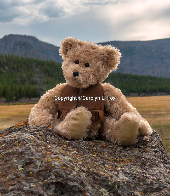 A stuffed teddy bear sits on a rock in a scenic area in Yellowstone National Park.