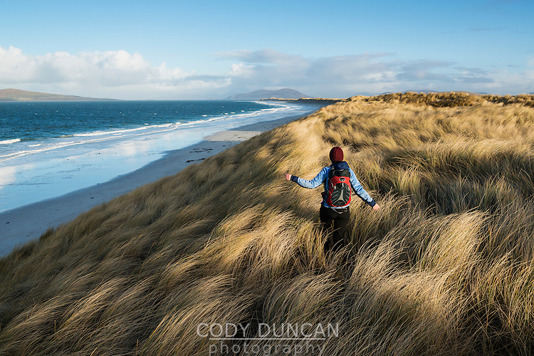 Woman walks through coastal dune grass at west beach, Berneray, Outer Hebrides, Scotland