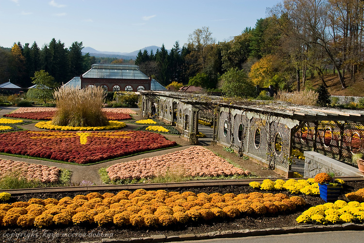 Biltmore Estate Fall Images