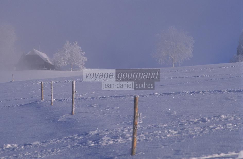 Europe/Allemagne/Forêt Noire/Env de Breitnau : Paysage rural en hiver