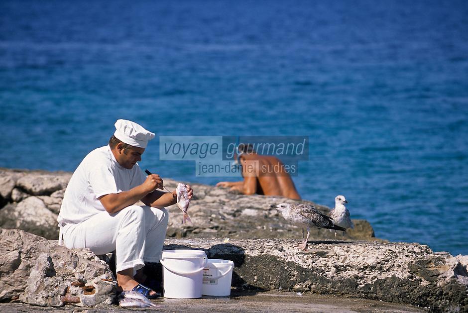 Europe/Croatie/Dalmatie:Primosten: Le cuisinier d'une  auberge nettoie sa pêche du jour  observé par les mouettes , au bord du littoral  ou affluent plongeurs et baigneurs