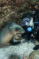 QT7265-D. California Sea Lion (Zalophus californianus) interacting with scuba diver (model released), biting diver's gloved fingers. Baja, Mexico, Sea of Cortez, Pacific Ocean.<br /> Photo Copyright &copy; Brandon Cole. All rights reserved worldwide.  www.brandoncole.com
