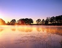 Back bay on fern Ridge Reservoir with sunrise. Oregon.