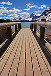 This walking bridge is found on a trail near Bow Lake in Banff National Park, Alberta, Canada.  Photo by Gus Curtis.