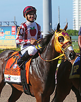 HALLANDALE BEACH, FL - JULY 01:   #7 Curlin's Approval  wth jockey  Luis Saez in the post parade of the G2 Princess Rooney Handicap Stakes at Gulfstream Park on July 01, 2017 in Hallandale Beach, Florida. (Photo by Liz Lamont/Eclipse Sportswire/Getty Images)