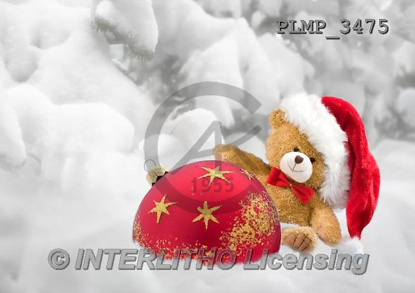 Marek, CHRISTMAS ANIMALS, WEIHNACHTEN TIERE, NAVIDAD ANIMALES, teddies, photos+++++,PLMP3475,#Xa# in snow,outsite,