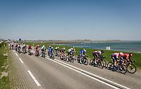 racing next to the sea; the wind creating echelons in the peloton<br /> <br /> 107th Scheldeprijs (1.HC)<br /> One day race from Terneuzen (NED) to Schoten (BEL): 202km<br /> <br /> ©kramon