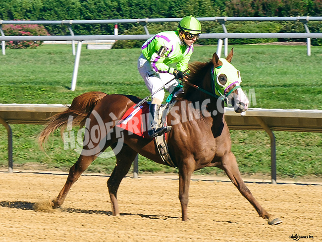 Imsexyandiknowit at Delaware Park on 8/22/16