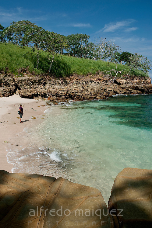 Rocky beach with clear waters and forest in Pacheca island. Las Perlas archipelago, Panama province, Panama, Central America.
