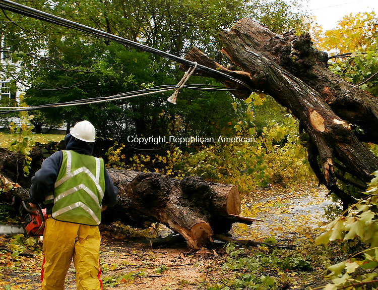 WATERTOWN, CT - 25 OCTOBER 2005 -102505JS03- John Lomento of Lewis Tree Service, Inc., plots his next cut as he removes a tree that had fallen across Colonial Road in Watertown during Tuesday's heavy wind and rain, blocking the road and taking down power lines.  --Jim Shannon Republican-American-- John Lomento, Lewis Tree Service, Inc., Watertown are CQ