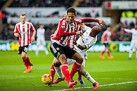Virgil van Dijk of Southampton  and Andrew Ayew of Swansea in action during the Barclays Premier League match between Swansea City and Southampton  played at the Liberty Stadium, Swansea  on February 13th 2016