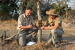 African Lion (Panthera leo) biologists, Luke Hunter and Jake Overton, placing camera trap on tree, Kafue National Park, Zambia