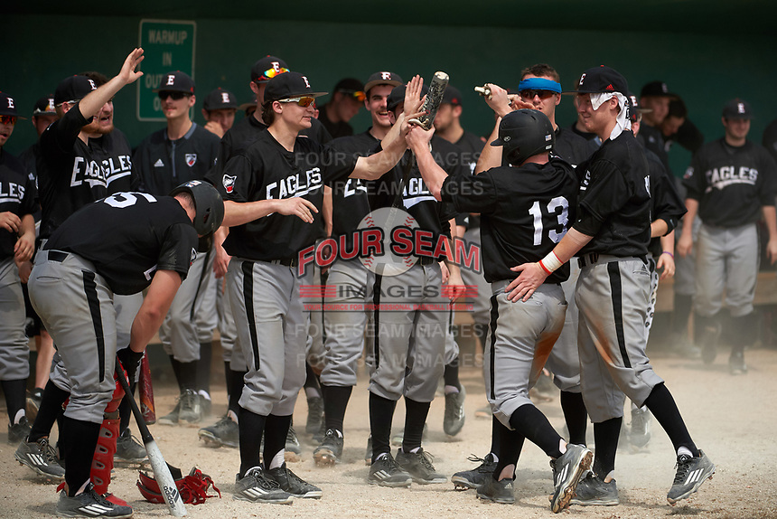 Edgewood Eagles Danny Appino (13) high fives teammates during the second game of a doubleheader against the Lasell Lasers on March 14, 2016 at Terry Park in Fort Myers, Florida.  Edgewood defeated Lasell 10-2.  (Mike Janes/Four Seam Images)