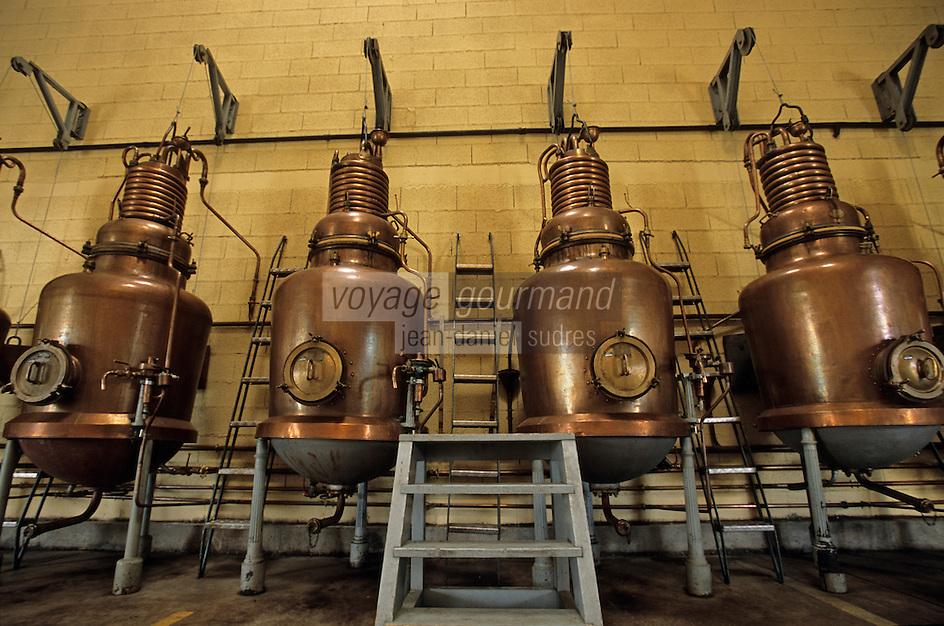 Europe/France/Auvergne/43/Haute-Loire/Le Puy-en-Velay: Dans la salle des alambics de la distillerie Pagès (verveine du Velay), RN88, Sortie Zl Blavozy //   France, Haute Loire, Le Puy en Velay, RN88, exit Zl Blavozy, Pages Distillery, Velay verbena, pot stills