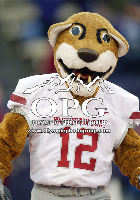 Nov 28, 2009:  Washington State's mascot Butch was on hand to cheer on the Cougars against Washington.  Washington defeated Washington State 30-0 at Husky Stadium in Seattle, Washington..