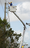 A Pike lineman repairs a damaged feeder line in South Miami-Dade county after Hurricane Irma Sept 11, 2017.  (Photo by David Adame/For FPL)