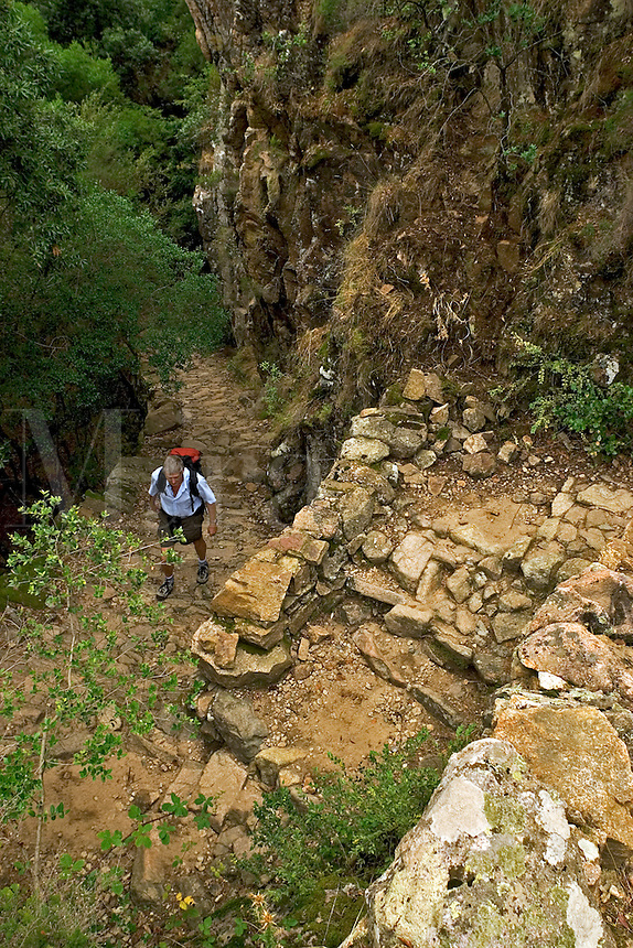 Corsica. France. Walker in the Gorges de Spelunca on the ancient paved mule track between Evisa and Ota. Corse..