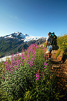 Backpacking along Exit Glacier on the Harding Icefield Trail.   Kenai Fjords National Park,  Alaska.  MR