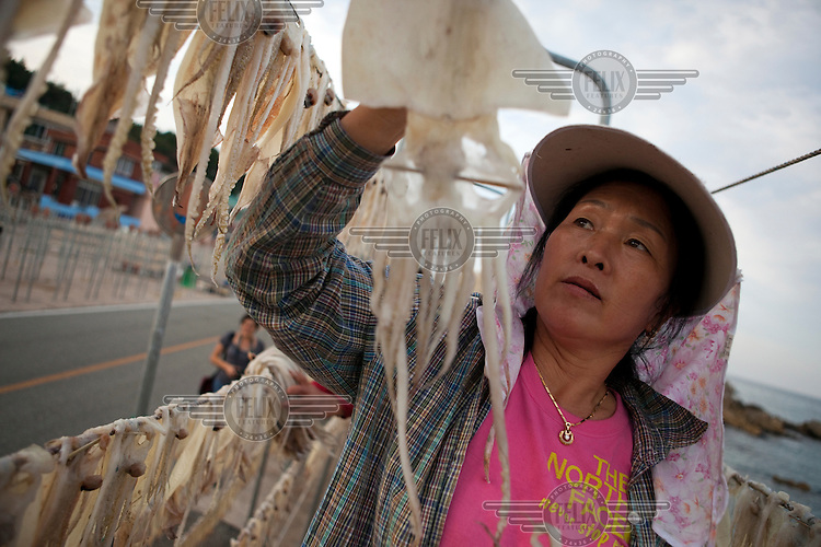 A woman hangs cuttlefish on a line to dry out.
