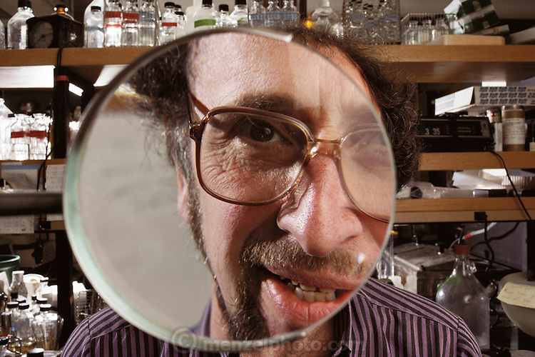 Human Genome Project: Dr Jonathan Beckwith, American biologist, examining through a magnifying glass, a Petri dish containing a genetically- engineered colony of the bacteria, Escherichia coli, (not in photo) in his laboratory at Harvard Medical School. As a respected scientist working with genetic engineering technology, Beckwith is concerned about the social & legal implications of human genetic screening, an option that might arise from the successful completion of the human genome project - an ambitious plan to make a complete biochemical survey of every gene expressed on all the 23 pairs of human chromosomes. MODEL RELEASED (1989)