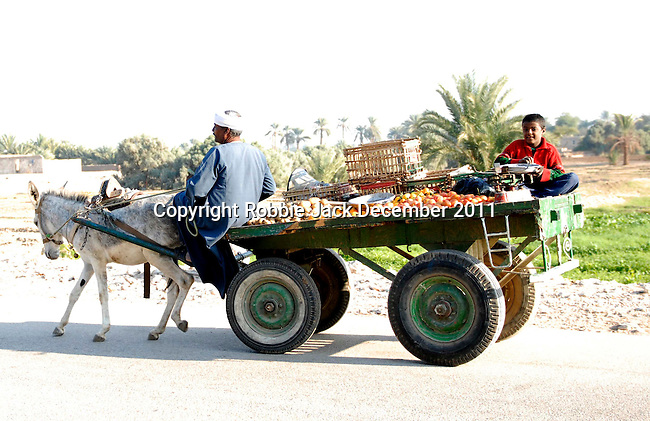 Man and young boy on a donkey cart on the West bank at Luxor.The town of Luxor occupies the eastern part of a great city of antiquity which the ancient Egytians called Waset and the Greeks named Thebes.