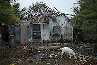 A house donated by a NGO (Sterre knows the name) lost its temporary roof and hence abondoned by the people living there. Kichankuppam, Nagapattinam, Tamil Nadu, India.