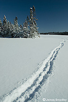 Trail left by person walking in the snow on a frozen lake