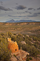Ancient Puebloan tower at Painted Hand Pueblo in Canyons of the Ancients National Monument, Sleeping Ute Mountain in background, west of Cortez, Colorado, USA, AGPix_1899