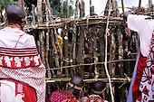 Lolgorian, Kenya. Siria Maasai; women building the magic house in the manyatta for the Eunoto coming of age ceremony.