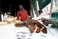 Mercato del pesce a Rialto, Venezia.<br /> Fish on sale at Rialto food markets, in Venice.<br /> UPDATE IMAGES PRESS/Riccardo De Luca