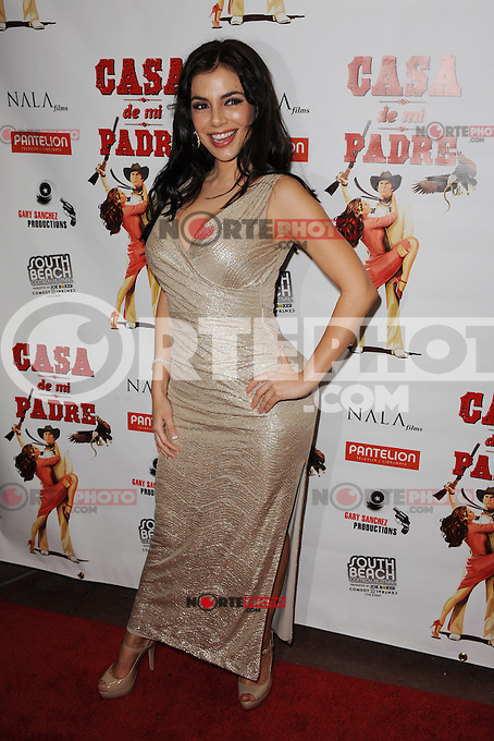 MIAMI BEACH , FL - FEBRUARY 29: Mariann Gavelo arrives at the Casa Di Mi Padre movie screening on February 29, 2012 in Miami Beach, Florida. © mpi04 / Media Punch Inc.
