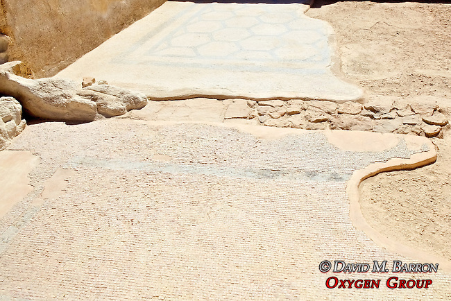 Masada Mosaic