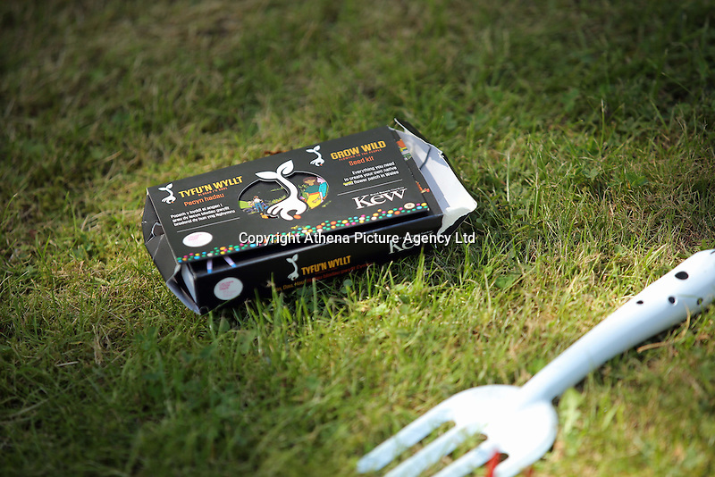 Pictured: A box of seeds by Kew Saturday 13 August 2016<br />Re: Grow Wild event at  Furnace to Flowers site in Ebbw Vale, Wales, UK