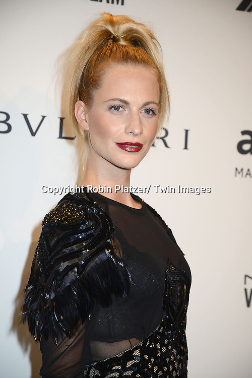 Poppy Delevingne attends the amfAR New York Gala on February 5, 2014 at Cipriani Wall Street in New York City.