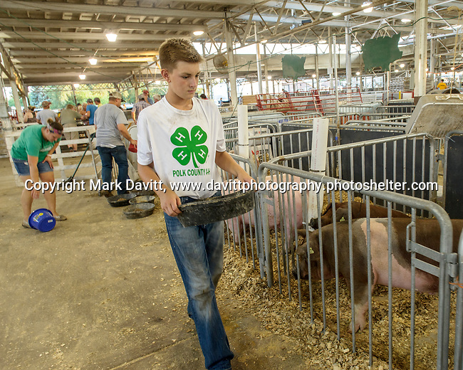 Eric and Stacia Sanny work on filling feed buckets while son, Carter carries feed to their hogs at the Polk County Fair July 21.