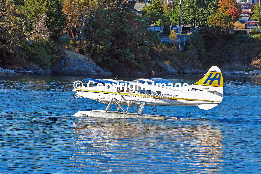 HarbourAir, seaplane, floatplane, taxiing, take-off, Harbour Airport, Victoria, British Columbia, Canada, 200809061032..Copyright Image from Victor Patterson, 54 Dorchester Park, Belfast, N Ireland, BT9 6RJ...Tel: +44 28 9066 1296.Mob: +44 7802 353836.Email: victorpatterson@mac.com..IMPORTANT: Go to www.victorpatterson.com and click on Terms & Conditions