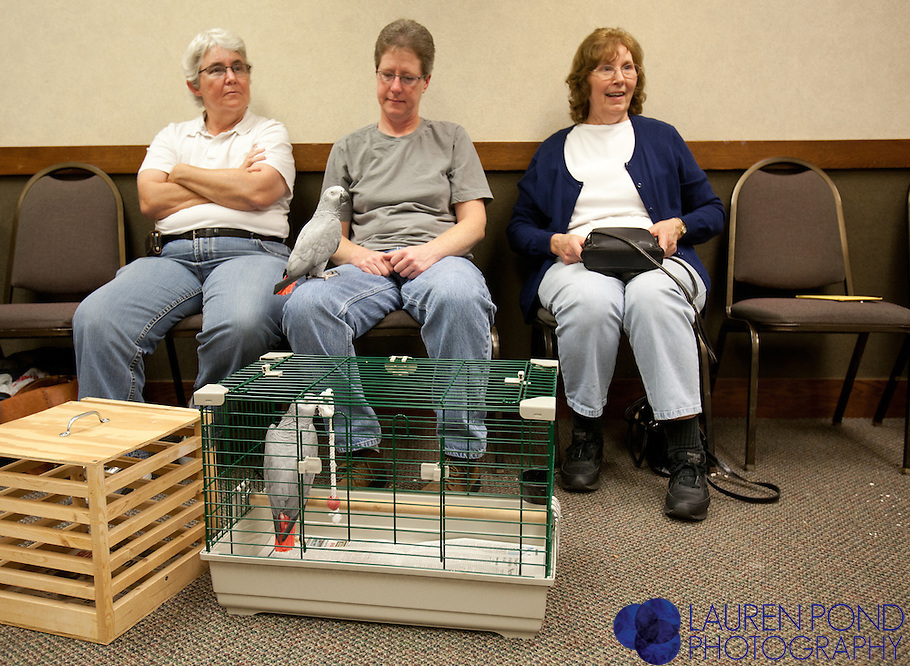 """From left: Jan Miller and Rene Beck, of Marietta, Ohio, wait with their African Grey parrots """"Babe"""" and """"Bubba"""" for a checkup with avian vet Dr. Ram Mohan at a semiannual bird clinic in Marietta, Ohio. To their right is Julie Wardeska, also of Marietta."""