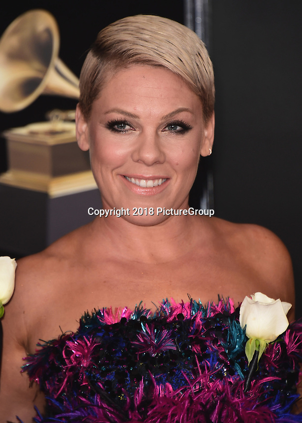 NEW YORK - JANUARY 28:  Pink at the 60th Annual Grammy Awards at Madison Square Garden on January 28, 2018 in New York City. (Photo by Scott Kirkland/PictureGroup)