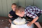 One Year Old Smash the Cake Session, One Year Old Birthday Session, Photos by Joelle Leder Photography, The Studio Yosemite, Oakhurst California, Bass Lake California.