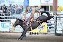 08-24-2017 Saddle Bronc